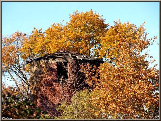 Le Moulin de Cantarrane en décor automnal, Sentier du Littoral Bassin d'Arcachon