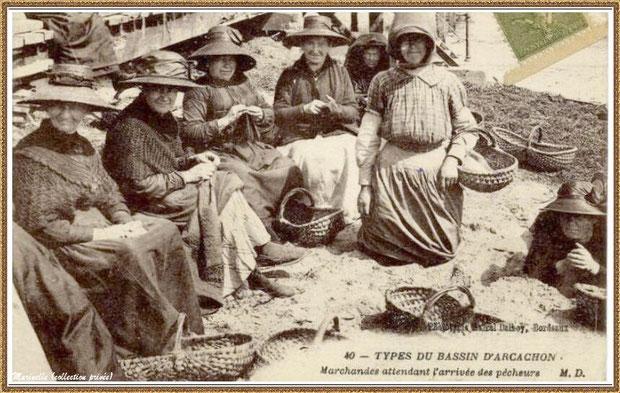 Gujan-Mestras autrefois : Marchandes attendant l'arrivée des pêcheurs, Bassin d'Arcachon (carte postale, collection privée)