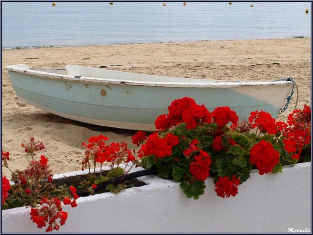 Canot sur la plage en bordure du Bassin et une terrasse fleurie, Village de L'Herbe, Bassin d'Arcachon (33)