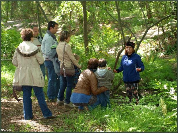 La conteuse à la Fête de la Nature 2013 au Parc de la Chêneraie à Gujan-Mestras (Bassin d'Arcachon)