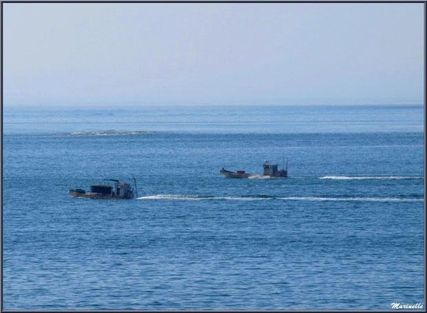 Bateaux chalands en partance parcs à huîtres vus depuis la jetée de La Corniche à Pyla-sur-Mer, Bassin d'Arcachon (33)