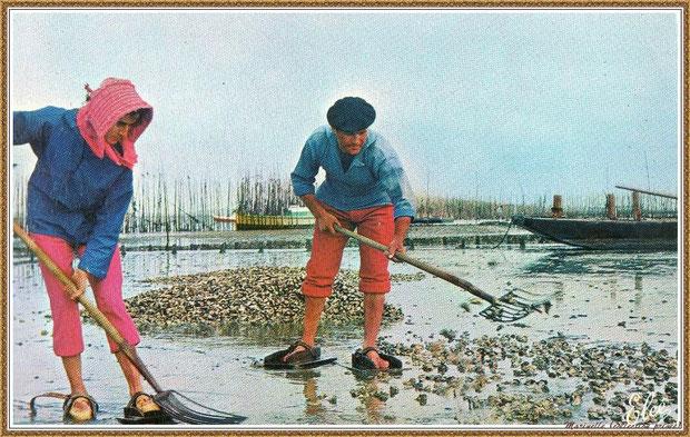 Gujan-Mestras autrefois : Folklore, couple d'ostréiculteur en tenue locale au travail sur parc à huîtres, Bassin d'Arcachon (carte postale, collection privée)