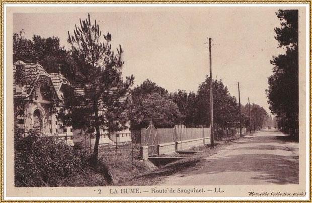Gujan-Mestras autrefois : La Hume, la Route de Sanguinet (actuelle Route des Lacs), Bassin d'Arcachon (carte postale, collection privée)
