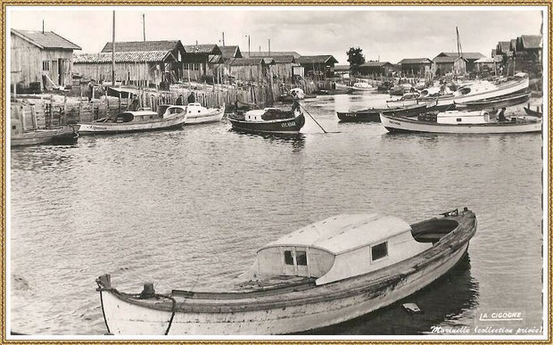 Gujan-Mestras autrefois : en 1965, pinasses dans la darse secondaire du Port de Larros, Bassin d'Arcachon (carte postale - version NB, collection privée)