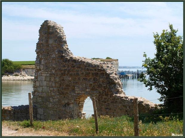 La Tour Blanche à Talmont-sur-Gironde avec vue sur les falaises du Caillaud et ses carrelets à ponton, Charente-Maritime