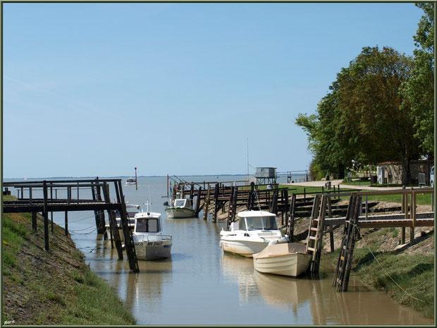 Le petit port de Talmont-sur-Gironde, à l'entrée du village, avec en fond un de ses carrlets à ponton, Charente-Maritime