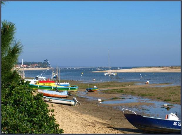 """A l'horizon, la jetée (débarcadère) """"Bélisaire"""" se jetant dans le Bassin (Cap Ferret) vue depuis """"'Le Mimbeau"""""""