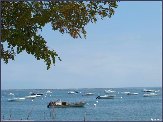 Le Bassin vu depuis la terrrasse d'une maison, Village de L'Herbe, Bassin d'Arcachon (33)