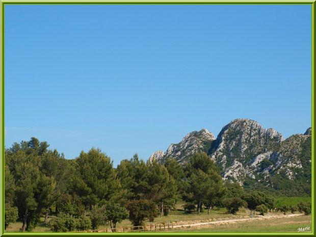 Les Alpilles et la route bordant le vignoble du Château Romanin à Saint Rémy de Provence (13)