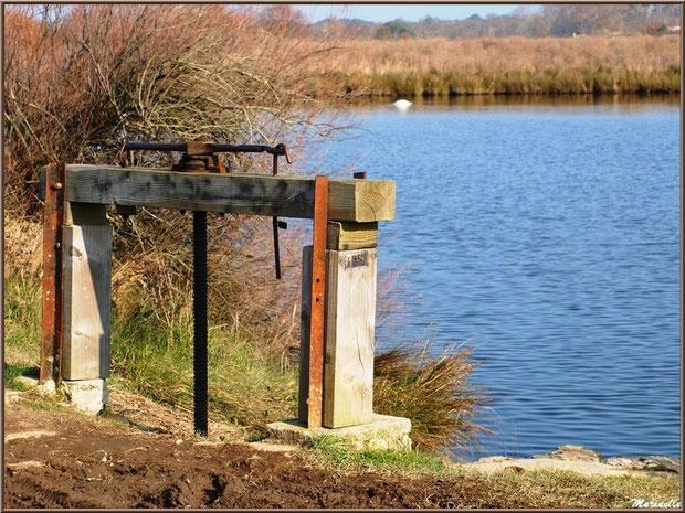 Une écluse en bordure d'un réservoir, Sentier du Littoral, secteur Domaine de Certes et Graveyron, Bassin d'Arcachon (33)