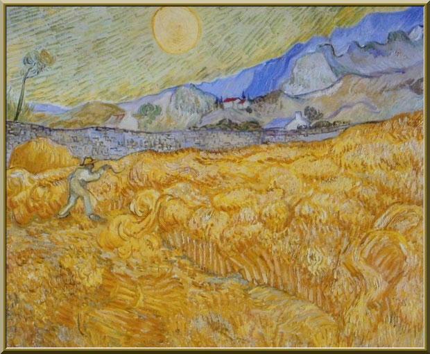 """Tableau """"La moisson"""" de Van Gogh dans le jardin du monastère de Saint Paul de Mausole à Saint Rémy de Provence (Alpilles - 13)"""