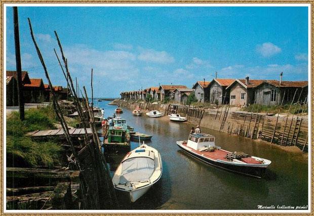 Gujan-Mestras autrefois : Port du Canal - pinasses et bateaux chalands, Bassin d'Arcachon (carte postale, collection privée)