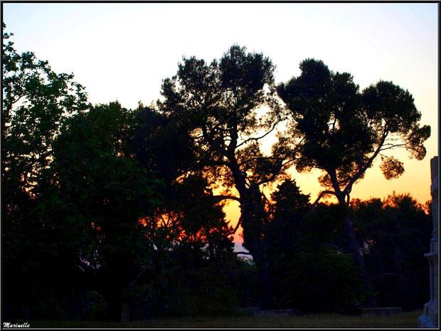 Coucher du soleil aux Antiques à Saint Rémy de Provence, Alpilles (13) : sur la droite, on distingue une partie du Mausolée des Jules