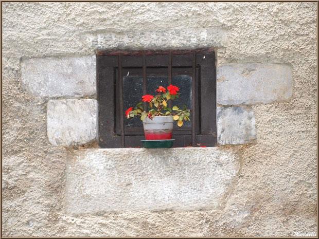 Fenestrou au pot de fleurs dans le village d'Aas, Vallée d'Ossau (64)