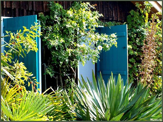 Portes ouvertes sur végétation luxuriante, Village de L'Herbe, Bassin d'Arcachon (33)
