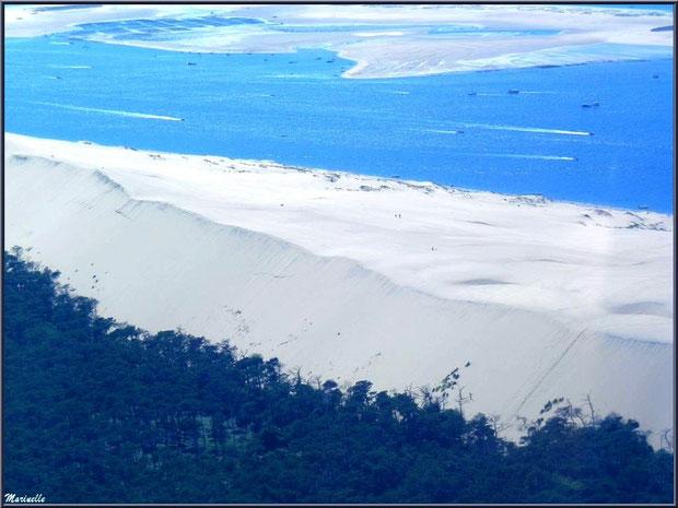 La Dune du Pyla et le Banc d'Arguin, Bassin d'Arcachon (33) vu du ciel