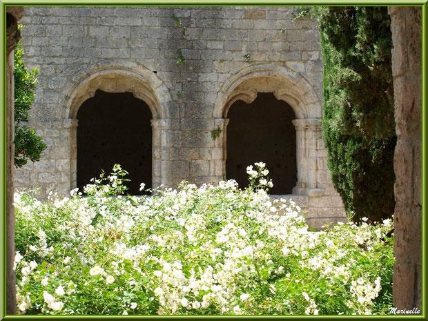 Depuis le jardin intérieur du cloître de l'abbaye de Silvacane, vue sur deux baies du cloître avec vestiges de départ d'arcs ogivaux, Vallée de la Basse Durance (13)