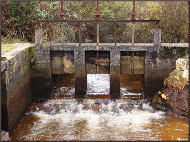 Une des écluses, à l'entrée du Parc de la Chêneraie à Gujan-Mestras (Bassin d'Arcachon)