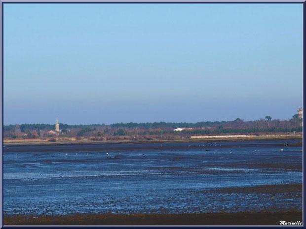 Le Bassin à marée basse avec, à l'horizon, l'église et le château d'eau d'Audenge, Sentier du Littoral, secteur Moulin de Cantarrane, Bassin d'Arcachon