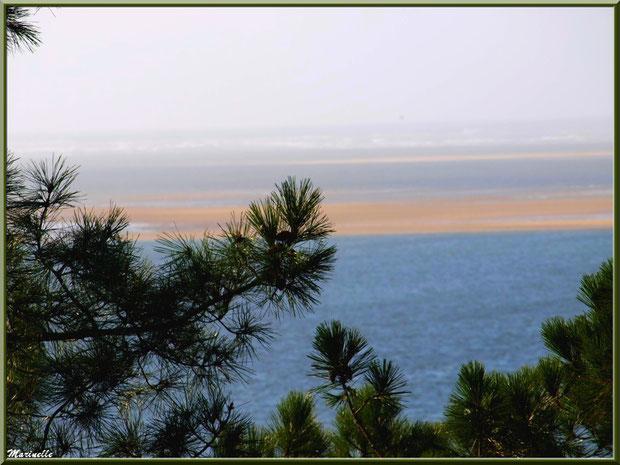 Vue depuis les hauteurs de La Corniche à Pyla-sur-Mer, Bassin d'Arcachon (33) : le Bassin, bancs de sable, Banc d'Arguin et les Passes en toile de fond