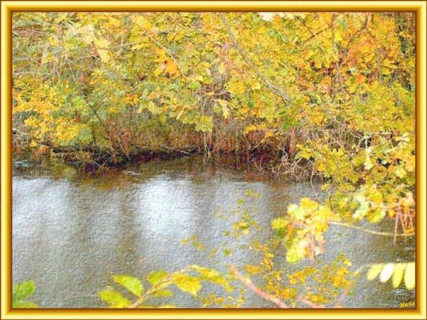 Automne sur le Canal des Landes au Parc de la Chêneraie à Gujan-Mestras (Bassin d'Arcachon)