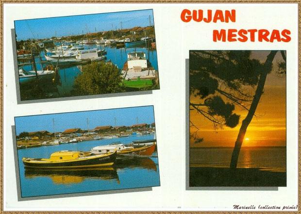 Gujan-Mestras autrefois : Carte postale mutivues, Bassin d'Arcachon (carte postale, collection privée)