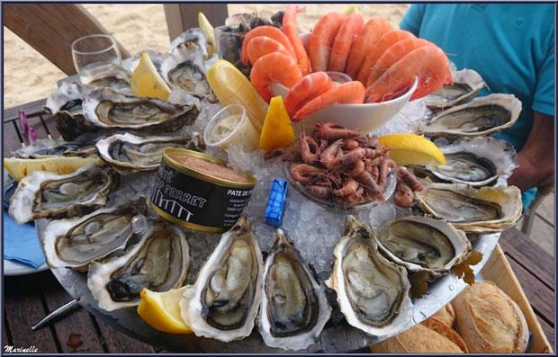 """Plateau de fruits de mer, dégusation d'huîtres """"La Barque à Huîtres"""", Village de L'Herbe, Bassin d'Arcachon (33)"""