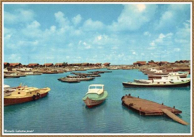 Gujan-Mestras autrefois : en 1960, pinasses et chalands dans la darse principale du Port de Larros, Bassin d'Arcachon (carte postale, collection privée)