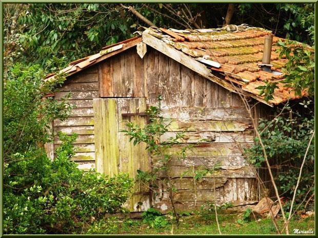Cabane dans les bois au Parc de la Chêneraie à Gujan-Mestras (Bassin d'Arcachon)