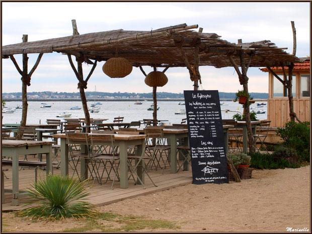 Une dégustation d'huîtres en bordure de plage et du Bassin, Village de L'Herbe, Bassin d'Arcachon (33)