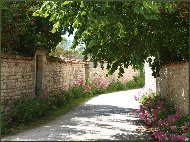 Ruelle fleurie à Talmont-sur-Gironde, Charente-Maritime