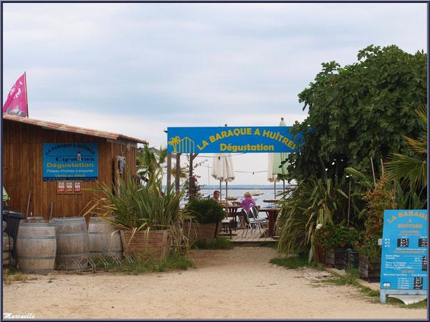 """Dégusation d'huîtres """"La Barque à Huîtres"""", Village de L'Herbe, Bassin d'Arcachon (33)"""