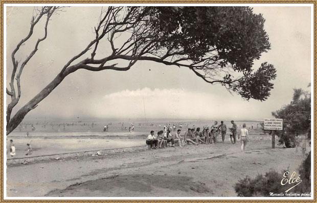 Gujan-Mestras autrefois : La Hume, la plage, Bassin d'Arcachon (carte postale, collection privée)