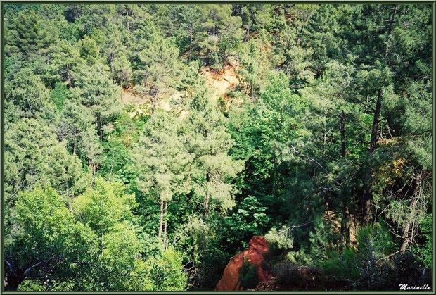 Les carrières d'ocres au coeur de la végétation, village de Roussillon, Lubéron (84)