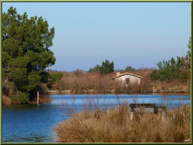 Cabane au milieu d'un des réservoirs sur le Sentier du Littoral, secteur Moulin de Cantarrane, Bassin d'Arcachon (ancienne maison d'un garde chasse-pêche ou éclusier)