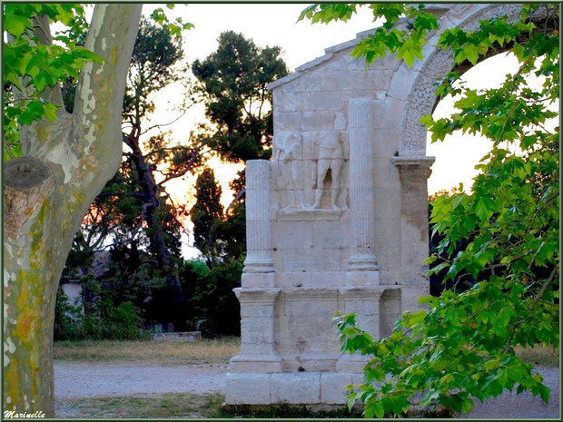 Détail d'un des côtés de l'Arc de Triomphe des Antiques, en fin d'après-midi, à Saint Rémy de Provence, Alpilles (13)