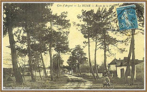 Gujan-Mestras autrefois : en 1923, Route de la Plage à la Hume, (actuelle Avenue de la Plage) avec, en fond, les maisons bordant la Route Départementale ou Route Nationale, Bassin d'Arcachon (carte postale, collection privée)
