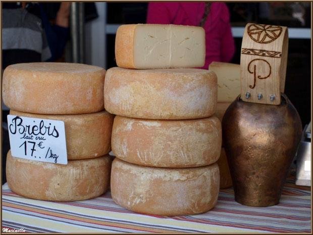Etal de fromage de brebis, Fête au Fromage, Hera deu Hromatge, à Laruns en Vallée d'Ossau (64)