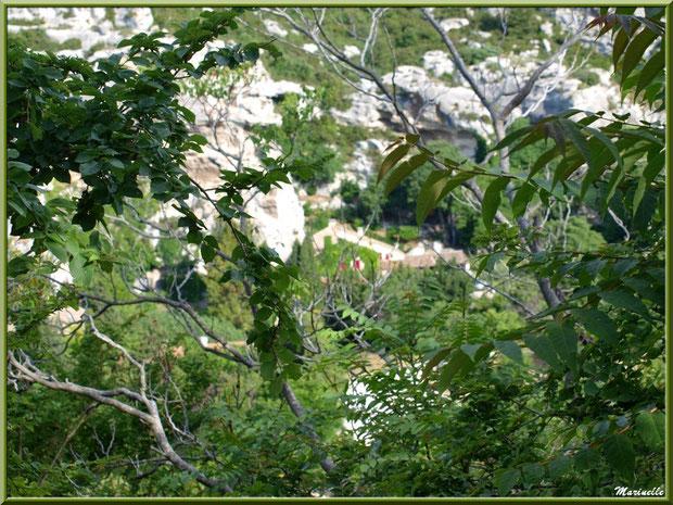 Derrière la verdure, le village en contrebas dans la vallée, Baux-de-Provence, Alpilles (13)
