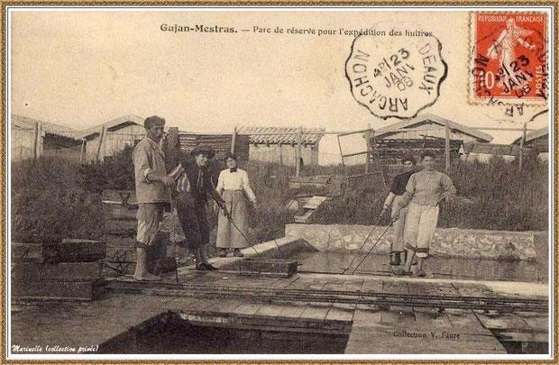 Gujan-Mestras autrefois : en 1908, réservoir à huîtres, Bassin d'Arcachon (carte postale, collection privée)