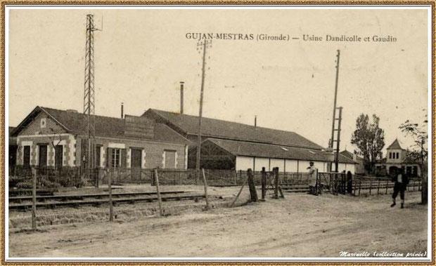 """Gujan-Mestras autrefois : Usine-Conserverie de sardines """"Dandicolle et Gaudin"""", Bassin d'Arcachon (carte postale, collection privée)"""