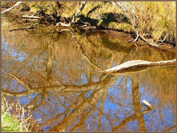 Reflets dans un réservoir, Sentier du Littoral, secteur Domaine de Certes et Graveyron, Bassin d'Arcachon (33)