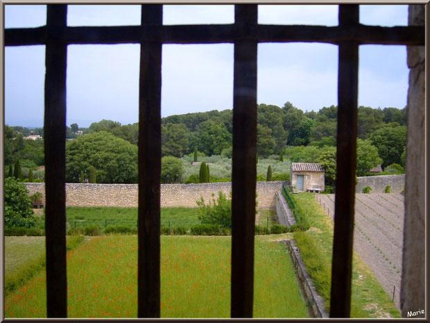 Vue sur le jardin depuis la chambre de Van Gogh au monastère de Saint Paul de Mausole à Saint Rémy de Provence (Alpilles - 13)