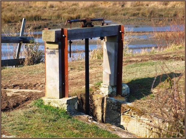 Une écluse en bordure du sentier et d'un chenal entre Bassin et réservoirs, Sentier du Littoral, secteur Domaine de Certes et Graveyron, Bassin d'Arcachon (33)