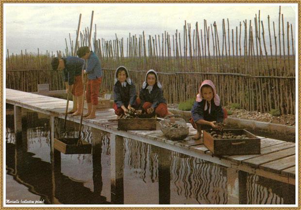 Gujan-Mestras autrefois : Folklore, enfants en tenue locale au triage des huîtres sur une passerelle de réservoir, Bassin d'Arcachon (carte postale, collection privée)