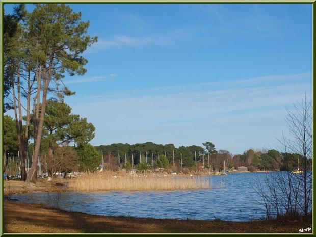 Au bord du Lac de Cazaux  (La Teste de Buch, Bassin d'Arcachon)