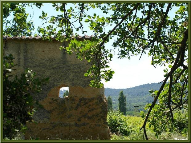 Mas en ruine dans la campagne environnante du village de Cucuron, Lubéron (84)