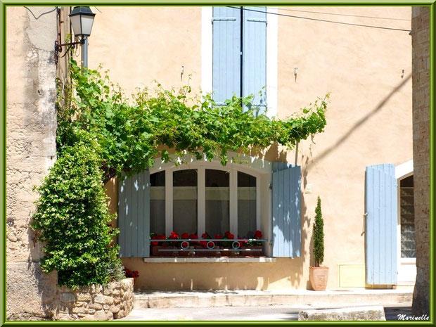 Une maison et sa treille dans le village de Cucuron, Lubéron (84)