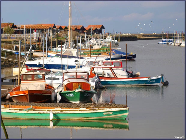 Pinasses, canots et autres bâteaux ancrés au Port de Larros à Gujan-Mestras, Bassin d'Arcachon (33)