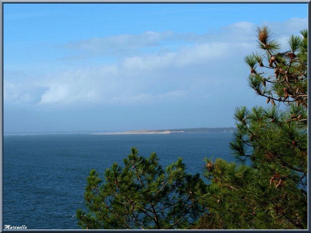 Le Bassin et la pointe du Cap Ferret vus depuis La Corniche à Pyla-sur-Mer, Bassin d'Arcachon (33)